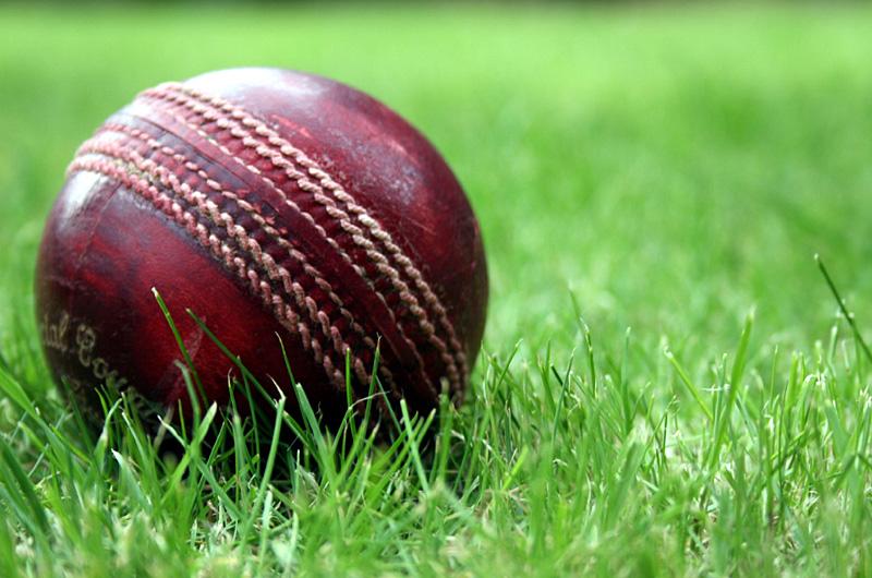 Cricket | danielyeow.com